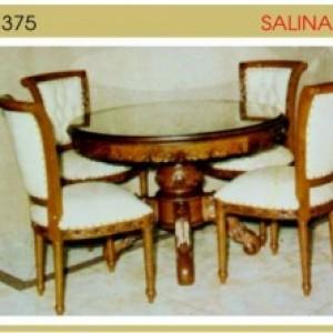 Salina Jog